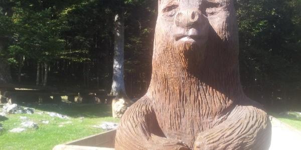 Mašun bear
