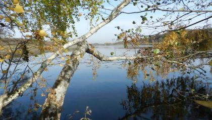 Blick auf den Wernsdorfer See