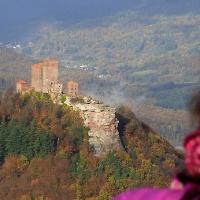 Blick vom Rehbergturm auf den Trifels