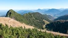 Hochfelln (1.671m). Rundwanderung auf der ruhigeren Ostseite