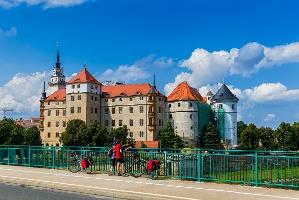Foto Elberadweg in Torgau (Schloss Hartenfels)