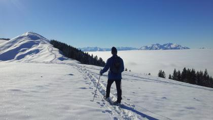 Vor uns die Hohe Kugel über dem Nebelmeer im Rheintal, rechts im Hintergrund der Säntis in der Schweiz
