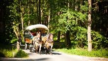 Sparkassen-Rundwanderung in die Sommerfrische Eisenberger Mühltal