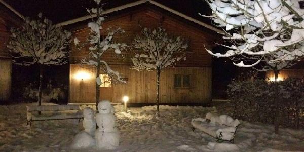 Chalet Harmonie Winter 1