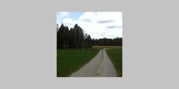 Weg zum Tradlezer Hof