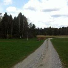 Weg zum Tradlezer Hof (Elisabeth Welz)