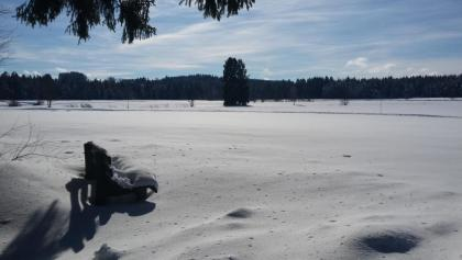Winterwanderweg in Eisenharz