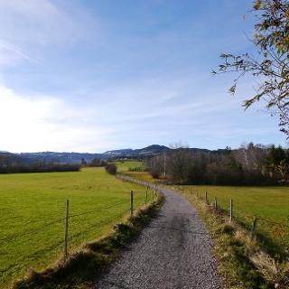 Spazierweg am Niedersonthofener See