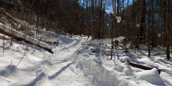 Der Weg zum Malerwinkel am Königssee im Winter