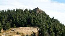 Kleiner Osser - Südanstieg von Berghäusl