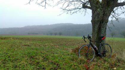 Cycled in fog the entire time today, need to go back with better visibility