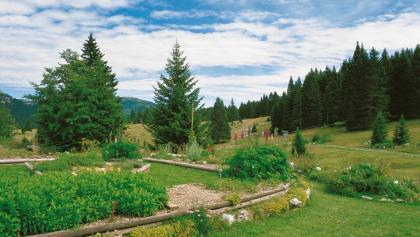 Giardino Botanico di Passo Coe