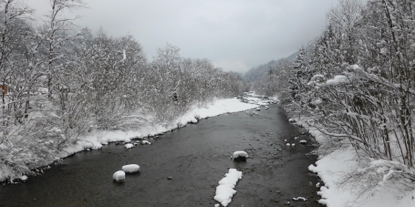Brücke bei Vandans