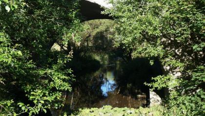 """Viadukt der """"Harzquerbahn"""" über die Warme Bode"""
