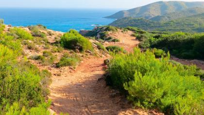 Wanderweg zur Cala Morell (7320)
