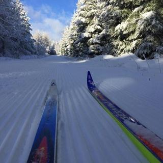 Skifahren auf der Loipe