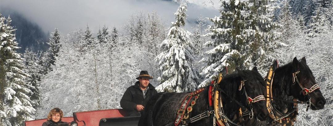 Pferdeschlittenfahrt Antholzertal