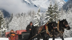 Horse carriage or sledge tour in Anterselva di Mezzo
