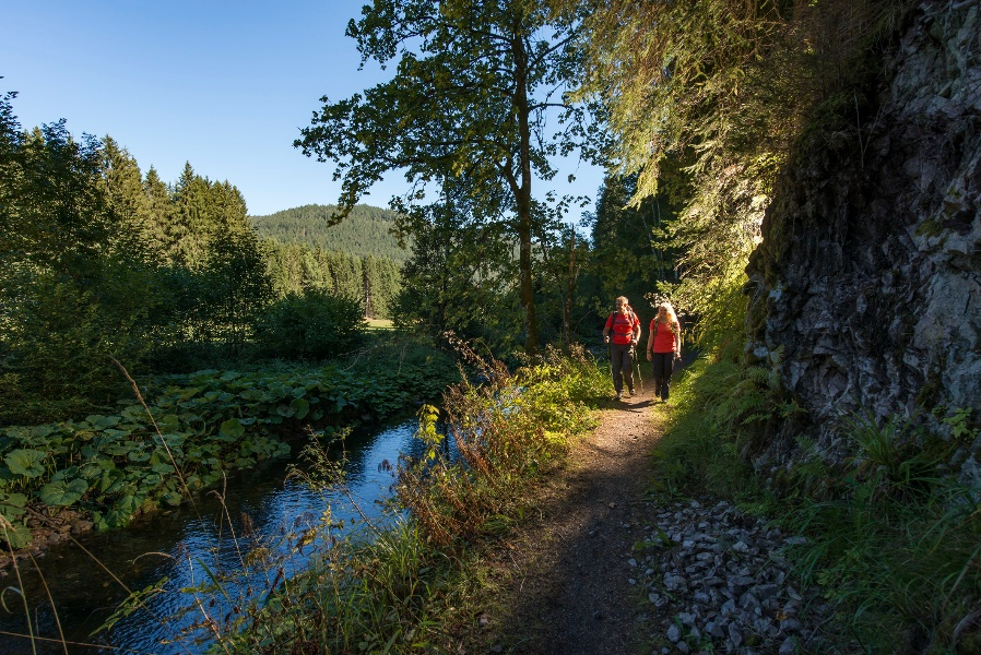 Albsteig Schwarzwald Etappe 3 Tour Ost: Häusern - St. Blasien - Menzenschwand - Feldberg