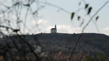 Blick vom Steinberg auf den Michelberg