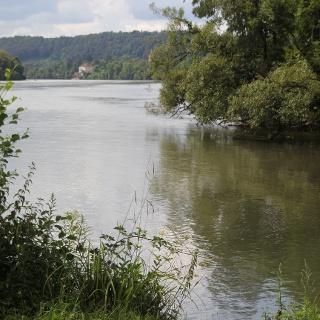 Naturschutzgebiet Wehra-Delta, Wehr-Brennet