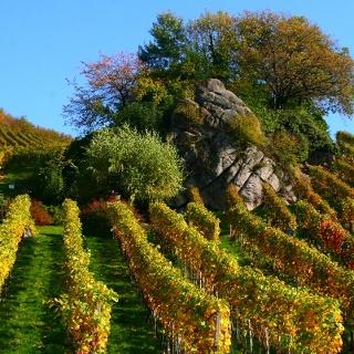 Dasenstein im Herbst