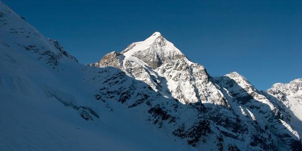 Während des gesammte Aufstieges, die Königsspitze im Blickfeld