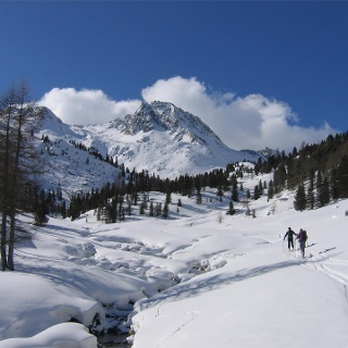 Val di Pinalto