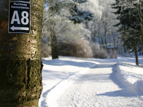 Winterwandern am Hennesee