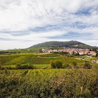 Aussichtspunkt auf Frankweiler