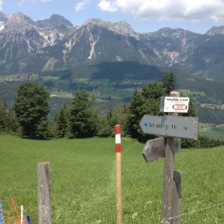 Wanderweg Nr. 50 beim Wieslechnerhof