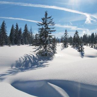 Winter in Riefensberg