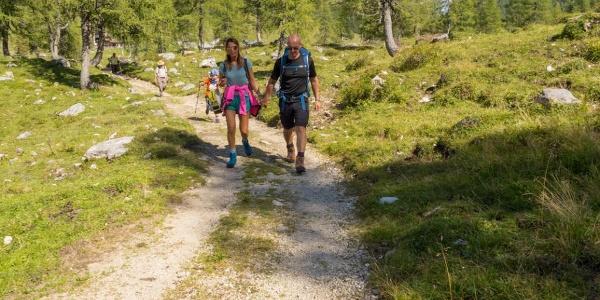 Wanderparadies für Familien, die Niederhüttenalm
