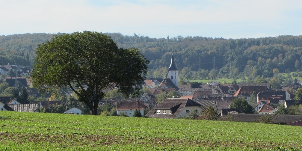 Wiernsheim