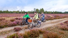 Naturpark-Tour durch die Niederlausitzer Heidelandschaft