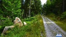 Nordwaldkammwege gesamt