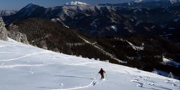 Auch als Skitouren beliebt: Abfahrt vom Eisenstein, im Hintergrund der Schneeberg