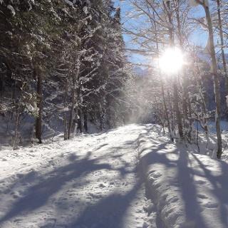 Winterwanderweg nach Kleinstockach-Bichlbächle