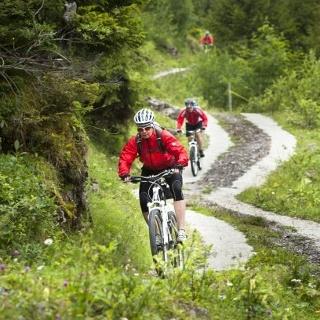Bike-Tour 403: Über unterschiedliche Beläge durch eine wilde Landschaft!