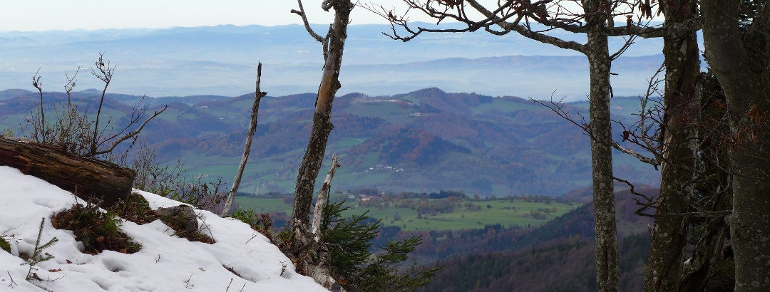 Zwischen Hohenstein und Ebenwiesen