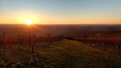Sonnenaufgang über dem Selztal