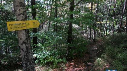 Nordwaldkammweg Mandelstein - Pyhrabruck