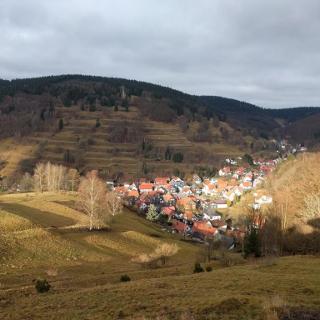 Blick auf Gießübel vom Löffelberghüttchen