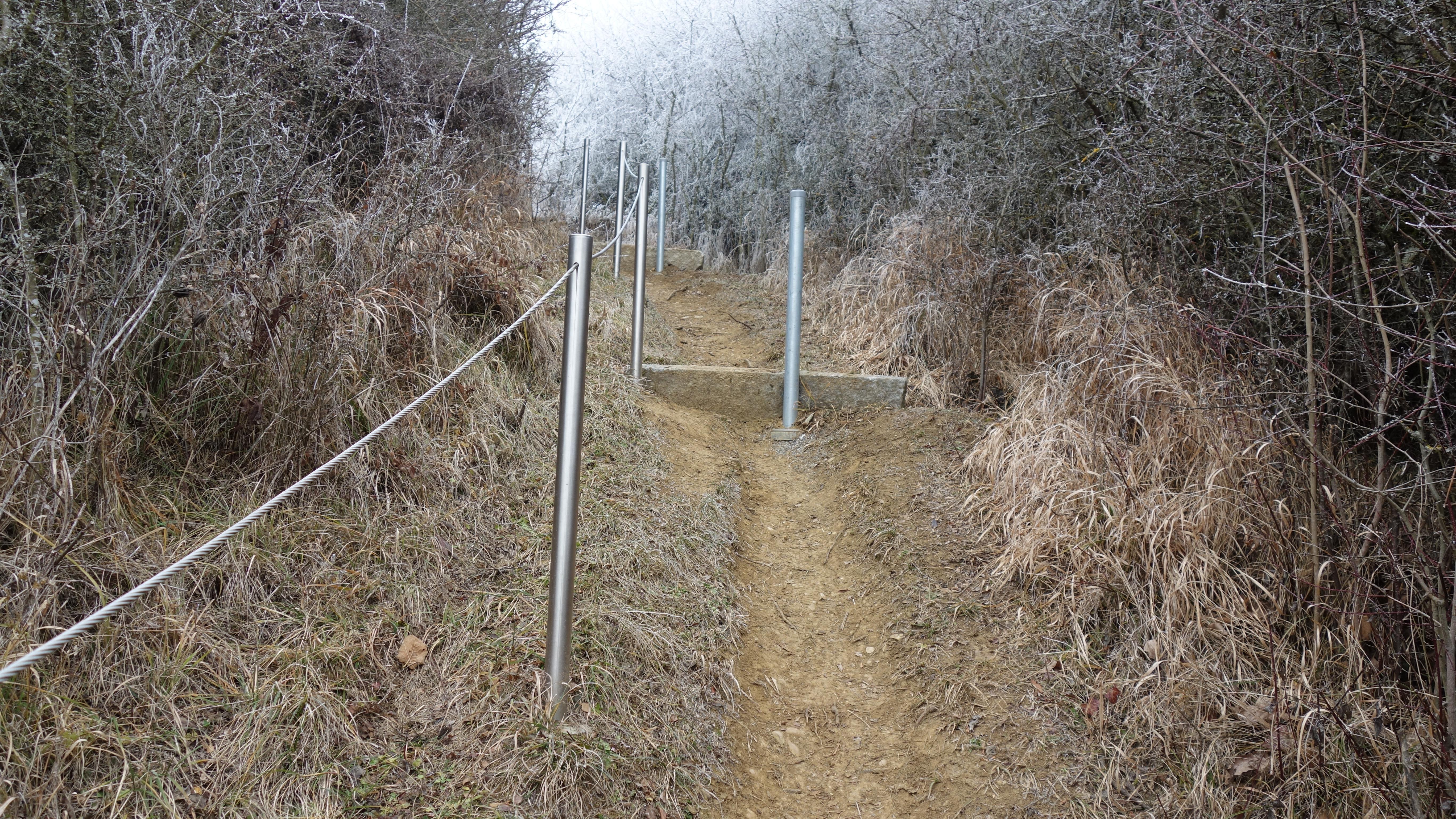 Teile der kritischen Wageabschnitte sind gut gesichert. Ein steileres - nicht gesichertes Stück im Wald - bedarf besonderer Aufmerksamkeit.