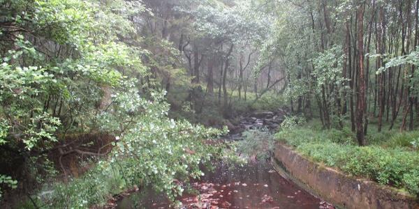 Weserzufluss