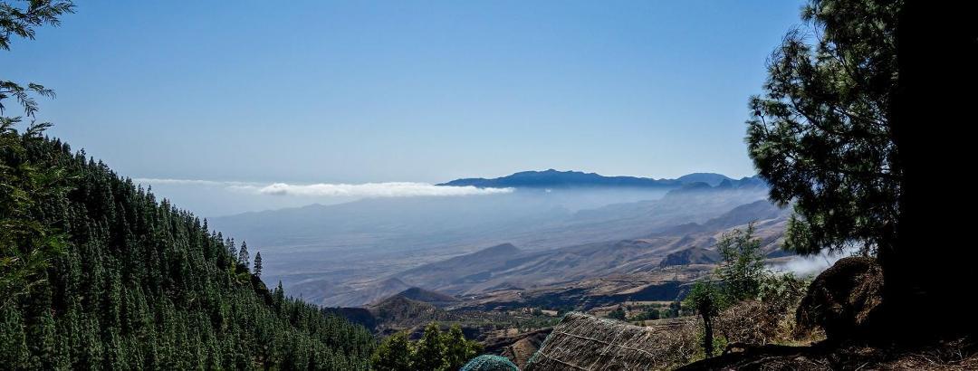 kurz vor Pico da Cruz