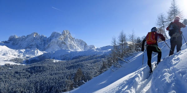 The beautiful view on Pale di San Martino mountains