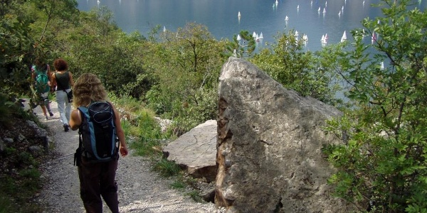 Along the Bustte - Tempesta trail