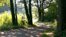 An Fluss und Kanal durchs Sempttal