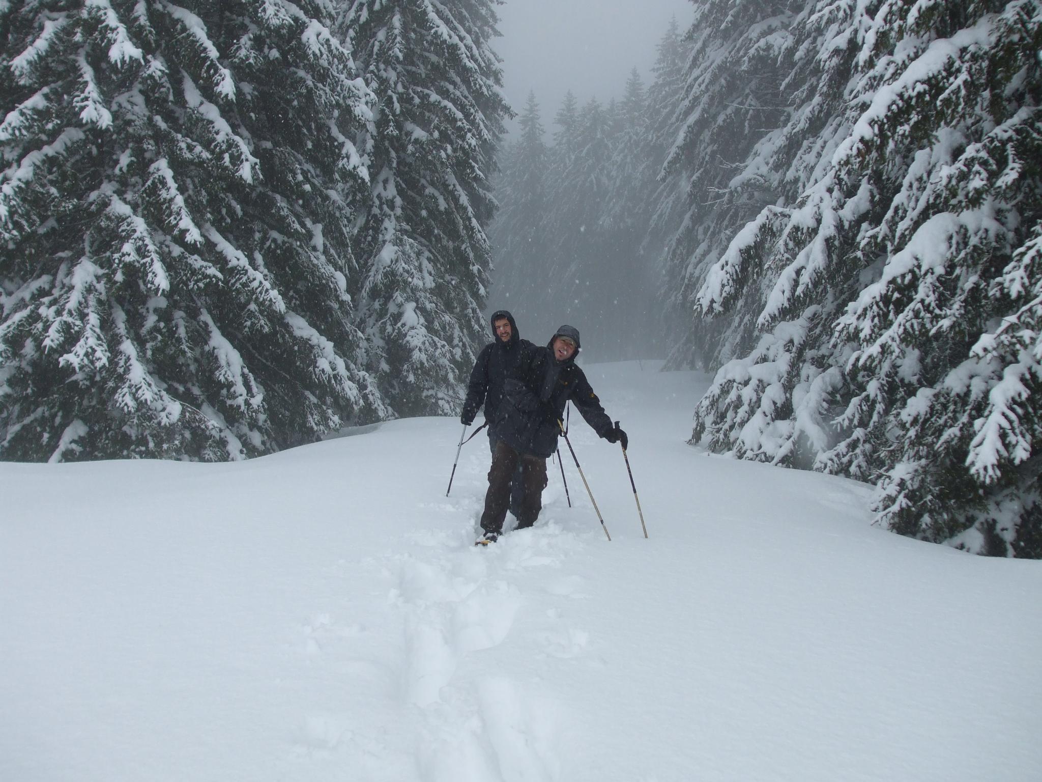 Feldberg Schneeschuhwandern